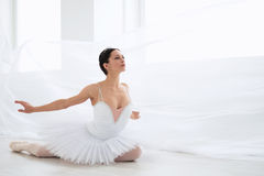 Ballerina in pointe. Beautiful young ballerina in pointe stock photography
