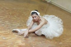 Ballerina in pose Stock Image