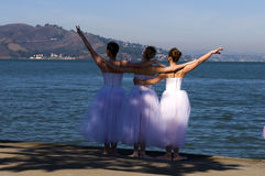 Ballerina's Stock Image