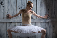 Ballerina standing near a wooden wall Stock Images