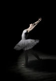 Ballerina  in   the  studio Stock Photography