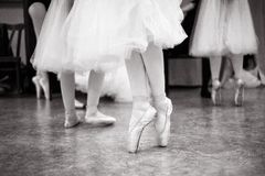Ballerina is training in the dance hall. royalty free stock photography
