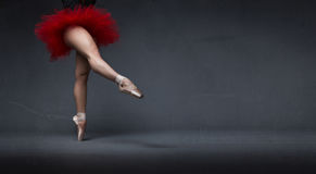 Ballerina with tutu indicated with foot Stock Image