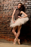 Ballerina in tutu near brick wall Stock Images