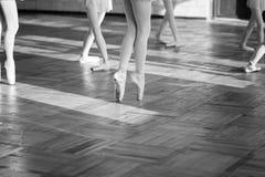 Ballerinas που χορεύει στην αίθουσα μπαλέτου στοκ εικόνες με δικαίωμα ελεύθερης χρήσης