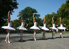 Ballerinas. In the event named:Under the crowns of Topcider's plane trees,in September 2011.,in Belgrade park Topcider,students of ballet school Lujo Davico Stock Images