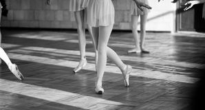 Ballerinas dancing in the ballet hall Royalty Free Stock Photo