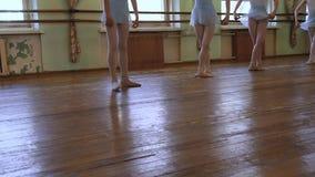 Ballerinas do plie during ballet class in baleet classroom. Young ballerinas do plie during ballet class in baleet classroom stock video