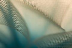 Ballerine 0004 Stockbilder