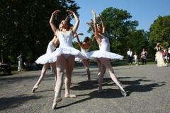Ballerine Fotografie Stock