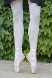Ballerine-Beine Stockfoto