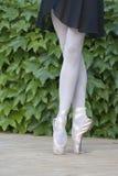 Ballerine-Beine Lizenzfreies Stockbild