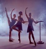 Ballerine che allungano sulla barra Immagini Stock Libere da Diritti