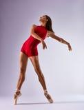 Ballerine de danseur images libres de droits