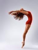 Ballerine de danseur photographie stock libre de droits