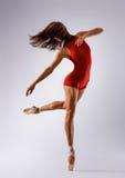 Ballerine de danseur image stock