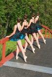 Ballerine nella sosta Immagine Stock Libera da Diritti