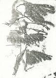 Ballerine, no.2 Images libres de droits
