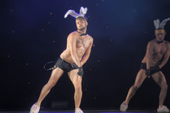 Ballerini con le orecchie del coniglietto Fotografie Stock