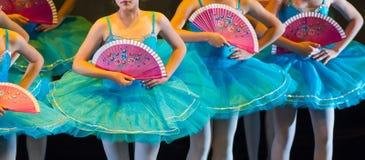 Ballerini durante le prestazioni di balletto gambe soltanto fotografia stock