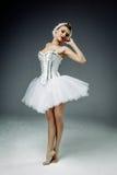 Ballerino di balletto classico femminile Fotografie Stock