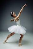 Ballerino di balletto classico femminile Fotografie Stock Libere da Diritti