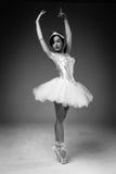 Ballerino di balletto classico femminile Immagini Stock Libere da Diritti