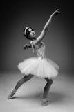 Ballerino di balletto classico femminile Immagini Stock