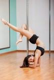 Ballerino latino splendido del palo Fotografia Stock Libera da Diritti
