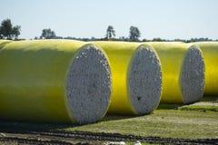 Balles de coton Image libre de droits