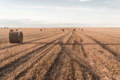 Balles de foin d'or dans la campagne au coucher du soleil images stock
