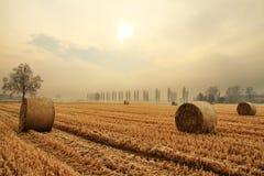 Balles de foin dans un domaine de blé Photographie stock