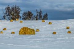 Balles de foin dans un domaine neigeux, cowboy Trail, Alberta, Canada image stock