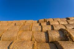 Balles de foin empilées sur un champ contre le ciel bleu images stock