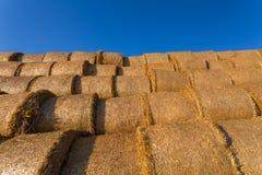 Balles de foin empilées sur un champ contre le ciel bleu Image libre de droits