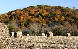 Balles de foin et couleur d'automne Photos stock