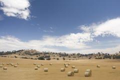 Balles de foin rondes dans l'horizontal australien de ferme Photographie stock libre de droits
