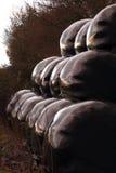 Balles de Sileage empilées avec soin dans la lumière peu commune Photographie stock