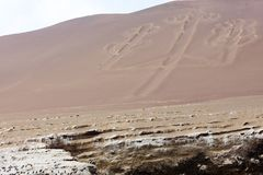 Ballestas Candelabrum Mark. Ancient large-scale geoglyph Candelabrum figure in Paracas national park Stock Images