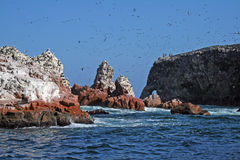 Ballestas islands Stock Photos