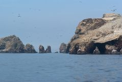 Ballestas Islands Royalty Free Stock Image