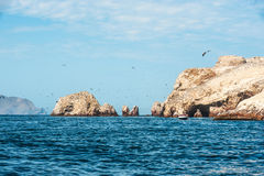 Ballestas Islands, Paracas National Reserve in Peru Royalty Free Stock Photos