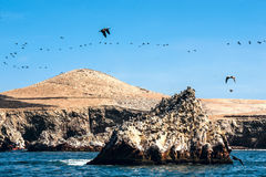 Ballestas Islands, Paracas National Reserve in Peru Stock Photography