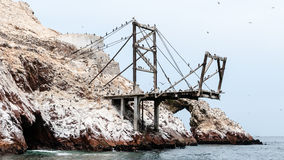 Ballestas islands - Peru Royalty Free Stock Images