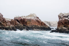 The Ballestas Islands - Pisco - Peru Royalty Free Stock Images