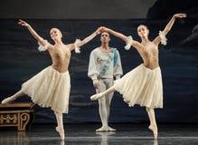 Ballet actor. In December 22, 2013, Ukraine Kiev base at the Bolshoi Ballet in Jiangxi Nanchang perform ballet to classical repertoire of Swan Lake Stock Photo