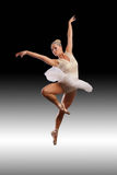 Ballet art Royalty Free Stock Photography