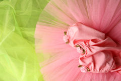Ballet Costume Royalty Free Stock Photos