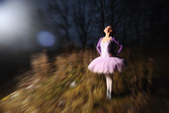 Ballet dancer Royalty Free Stock Image