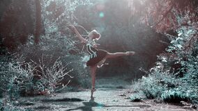 Ballet dancer in forest glade Royalty Free Stock Photo